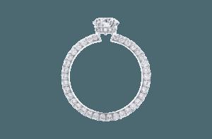 Diamond Ring with full circle pave diamonds